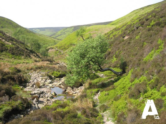 Not Unlike the Peak District, yet Bowland is far less known...